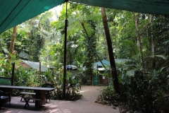 Eco Friendly Stay In The Daintree | Daintree Crocodylus Village