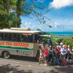 Enjoy a group photo at a scenic look out in the Daintree Rainforest
