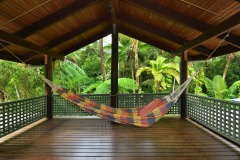 Enjoy A Moment Of Peace And Quiet At Wait A While Daintree Rainforest