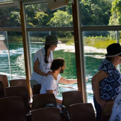 Enjoy a nature and wildlife boat cruise on the Volcano Crater Lake Barrine