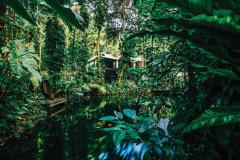 Enjoy a Rainforest Eco Retreat at Daintree Eco Lodge | Daintree Accommodation