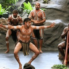 Enjoy Aboriginal cultural shows at Tjapukai