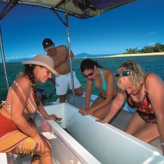 Enjoy glass bottom boat tours around Low Isles from Port Douglas