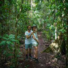 Enjoy the rare rainforests of Cairns and Tropical North Queensland