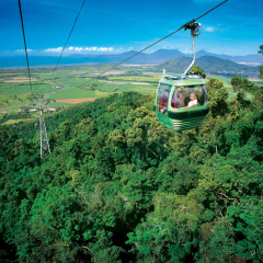 Enjoy the stunning views from your Skyrail gondola