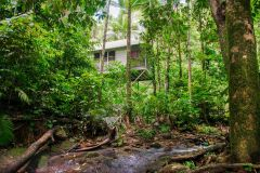 Enjoy the tranquility and privacy of the Bayans amongst the Rainforest