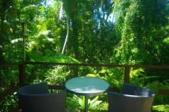 Enjoy tranquil Rainforest views overlooking Coopers Creek