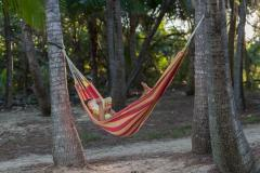 Enjoy your own piece of tropical paradise at Thala Beach Nature Reserve Port Douglas