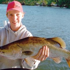 Estuary fishing in Cairns