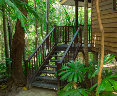 Rainforest Cabins Port Douglas - Eucalypt Bungalow at Thala Beach Lodge