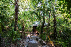 Eco Resorts Port Douglas - Eucalypt Bungalow at Thala Beach Lodge