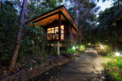 Beachfront Eco Resorts Port Douglas - Eucalypt Bungalow at Thala Beach Lodge