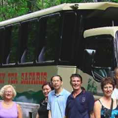 Everyone loves our 4WD trucks on our Cape Tribulation tours