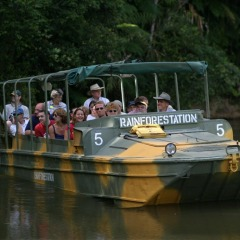Experience a World War 11 amphibious army duck rig and ride thru the rainforests and rivers in the Kuranda rainforest