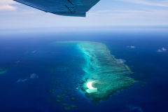 Experience the beauty of the Great Barrier Reef with a Scenic Flight