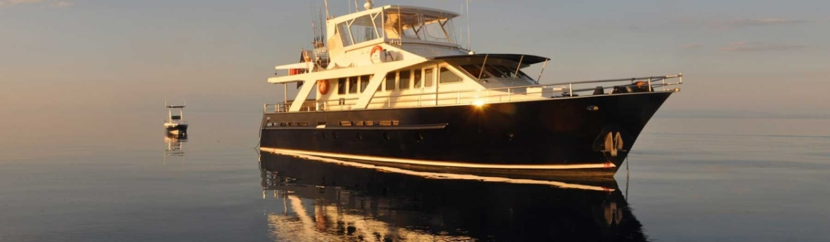 Experience the Great Barrier Reef on a Luxury Charter Yacht