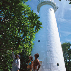 Explore the historic lighthouse on Low Isles on the Great Barrier Reef