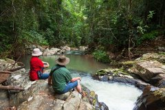 Explore the Tropical Rainforest surrounds