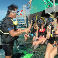 Family 2 Day Tour Package | Great Barrier Reef & Kuranda | Introductory & Certified Scuba Diving