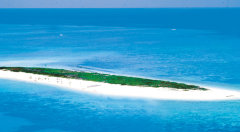 Family 4 Night Package - Michaelmas Cay & Kuranda