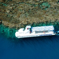 Family Water Activity | Semi-Submersible Tour Included In Day 1 | 2 Day Combo Reef & Rainforest