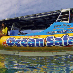 Fast Great Barrier Reef Trip Only 25 Minutes