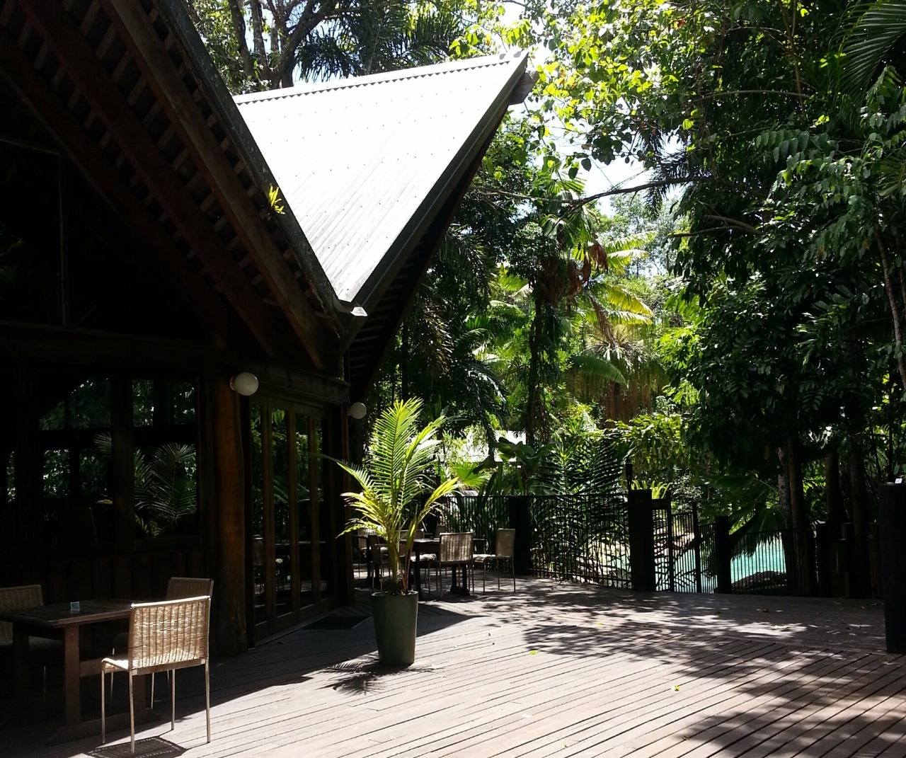 3 your family accommodation in the daintree rainforest