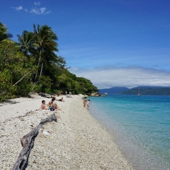 Fitzroy Island Tour - Coral lined beaches on Fitzroy Island Great Barrier Reef Australia
