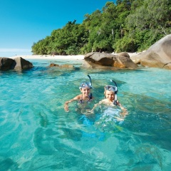 Fitzroy Island Tour - Great for Families