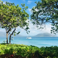 Fitzroy Island tours - Great Barrier Reef Cairns