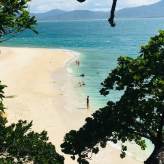 Fitzroy Island Tours - Walking the Beaches