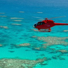 Fly low over coral reefs on our fly cruise Great Barrier Reef tour package
