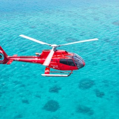 Fly From Cairns To The Outer Barrier Reef And Cruise Back