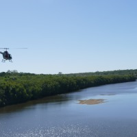 Flying Above the Mitchell River