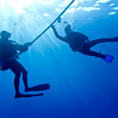 Free Introductory Try Scuba Dive | Private Charter Boat To The Great Barrier Reef