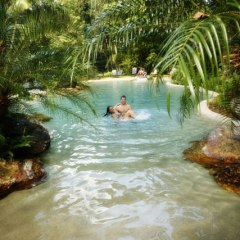 Free Time Included In Your 2 Day Cape Tribulation & Daintree Stay | Relax By The Pool | Ferntree Daintree Resort