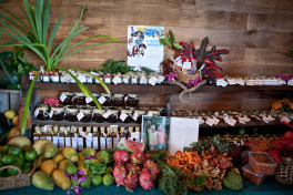 Fresh Produce Taste Port Douglas 2017