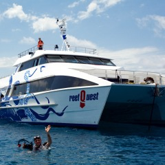 Friendly Atmosphere | Learn To Dive On The Australian Great Barrier Reef