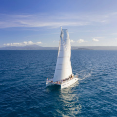 Full Day Private Charter Boat From Port Douglas