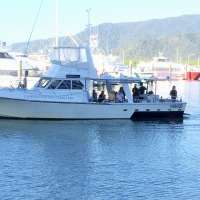 Full Day Sole Fishing Charter On The Great Barrier Reef | Departs From Cairns | MV-CFC