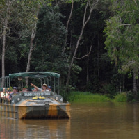 Full Day Tour Rainforestation With Return Transfers From Port Douglas | Army Duck Tour
