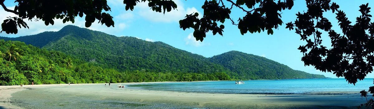 Full Day Tour To Daintree, Cape Tribulation And More | Cape Tribulation Beach