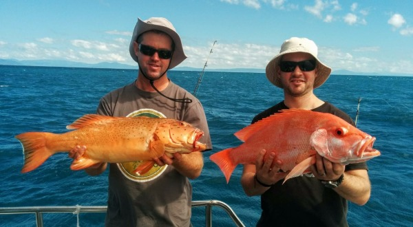 Full Day Tropical North Queensland Reef Fishing Charter | Coral Trout & Nannygai