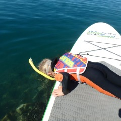 Fun Family Day Full Day On Low Isles | Young Children Can Enjoy SUP Boarding With An Adult