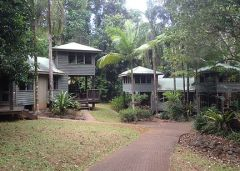 Garden Rooms located amongst the Rainforest Gardens at Ferntree Rainforest Lodge