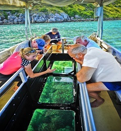 Glass Bottom Reef Tour