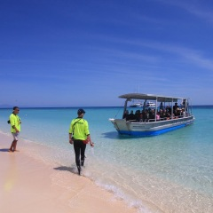 Glass bottom boat tour Cairns - Michaelmas Cay Great Barrier Reef Cairns