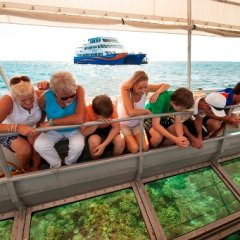 Glass bottom boat tour Great Barrier Reef