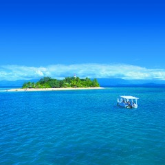 Glass bottom boat tour Low Isles Port Douglas