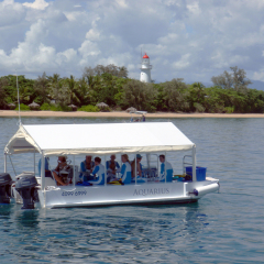 Glass Bottom Boat Tours available on your half day charter boat from Port Douglas